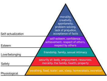350px-Maslow's_Hierarchy_of_Needs.svg